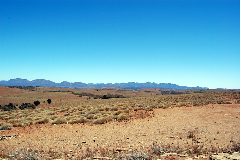 Flinders Ranges 21