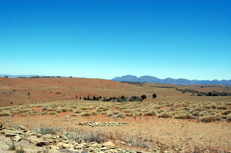 Flinders Ranges 22