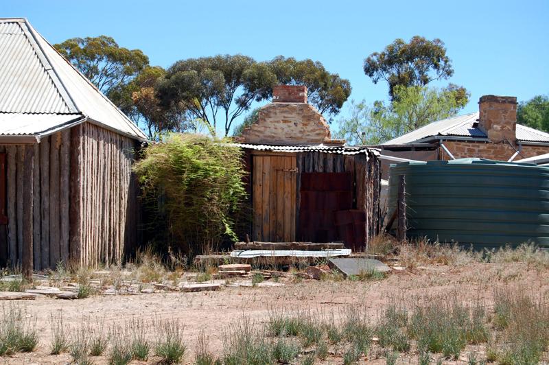 Flinders Ranges 31