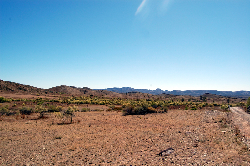 Flinders Ranges 33