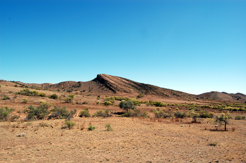 Flinders Ranges 34