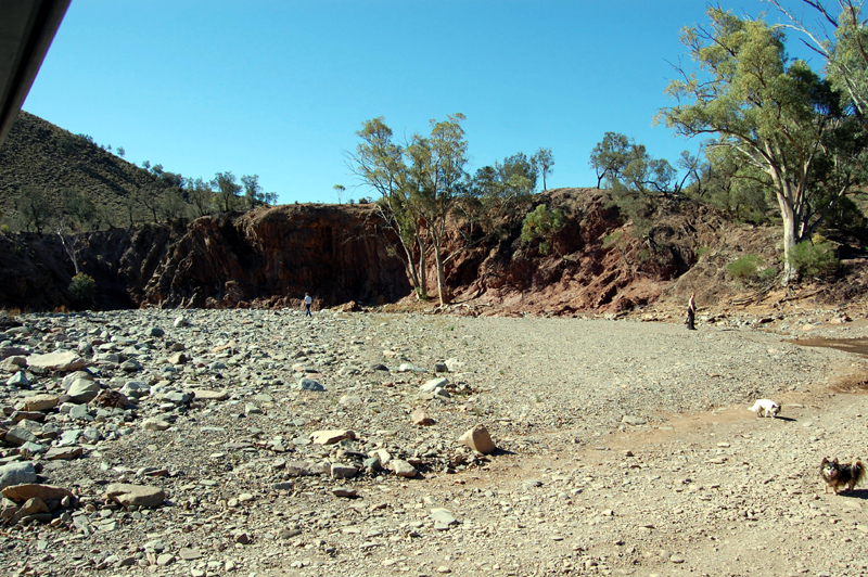 Flinders Ranges 39