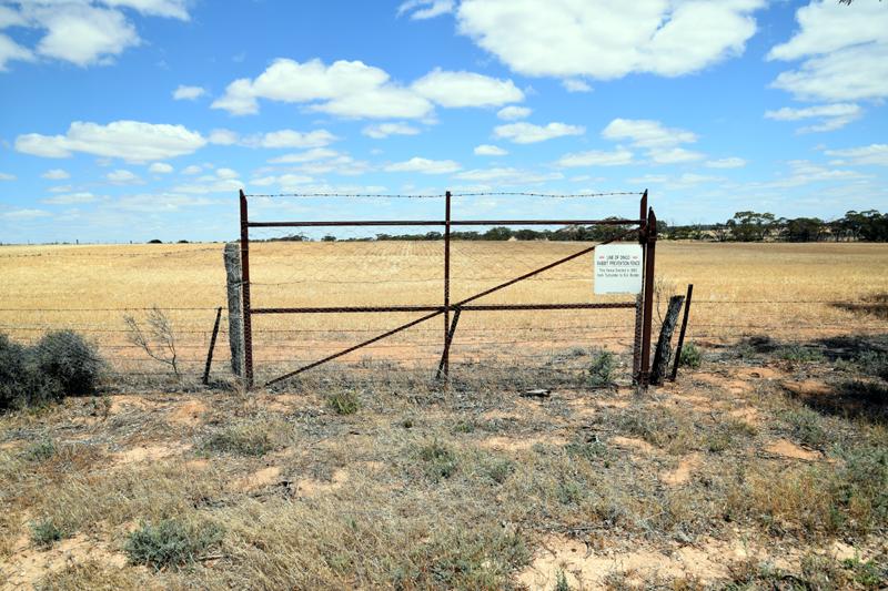Gepperts gate 5